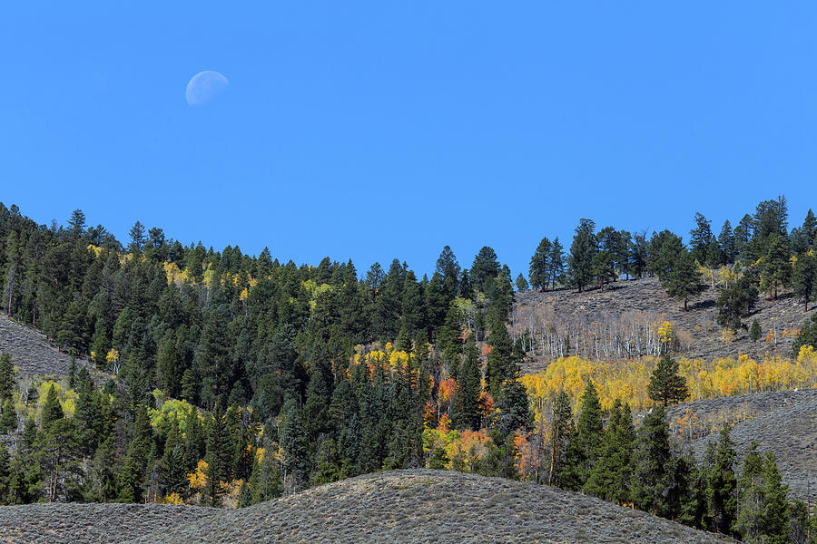 Waning Gibbous Moon Photograph - Autumn Moon by James BO Insogna
