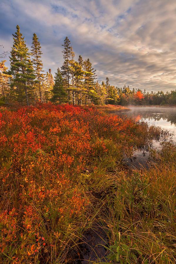 Autumn Morning Mist On Fraser Pond #2 by Irwin Barrett