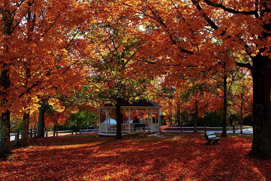 Autumn Morning on Rumney Common by Jeff Folger