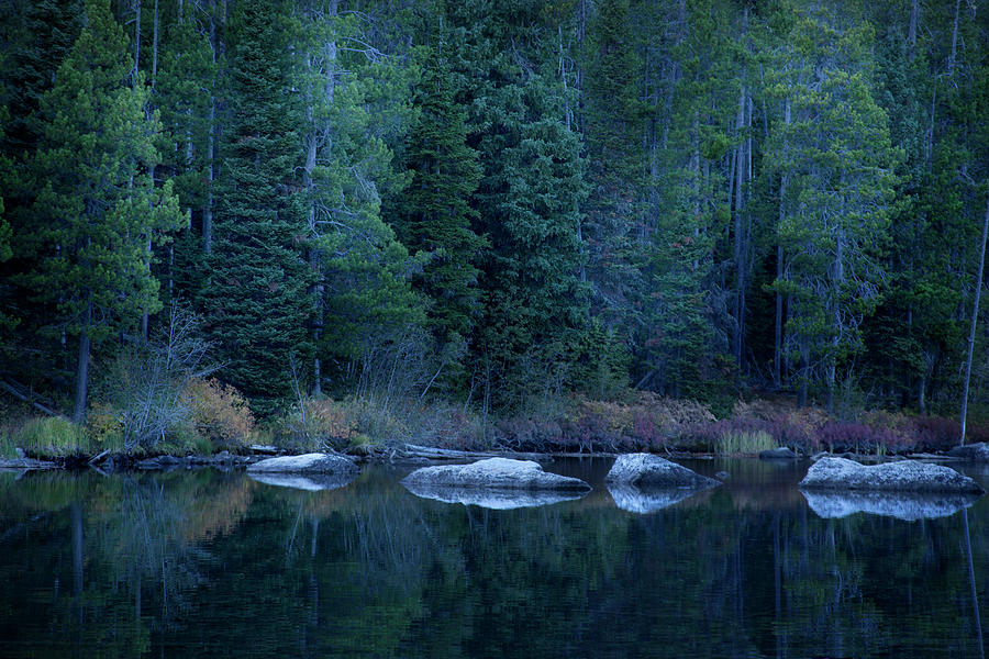 Autumn Mountain Stream by David Chasey