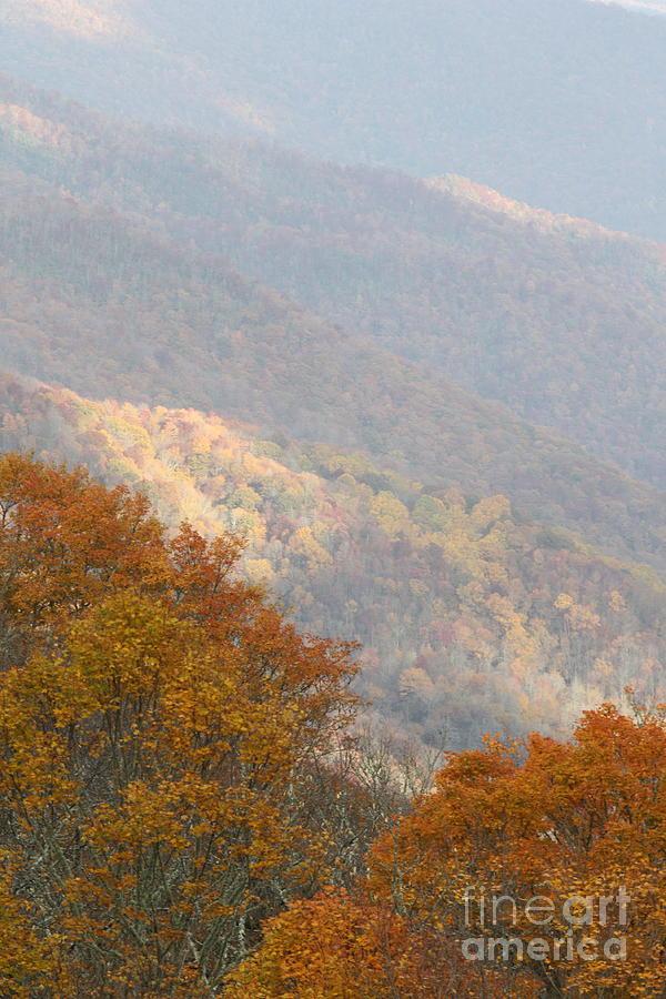 Photographs Photograph - Autumn On Blue Ridge Parkway by Felix Lai