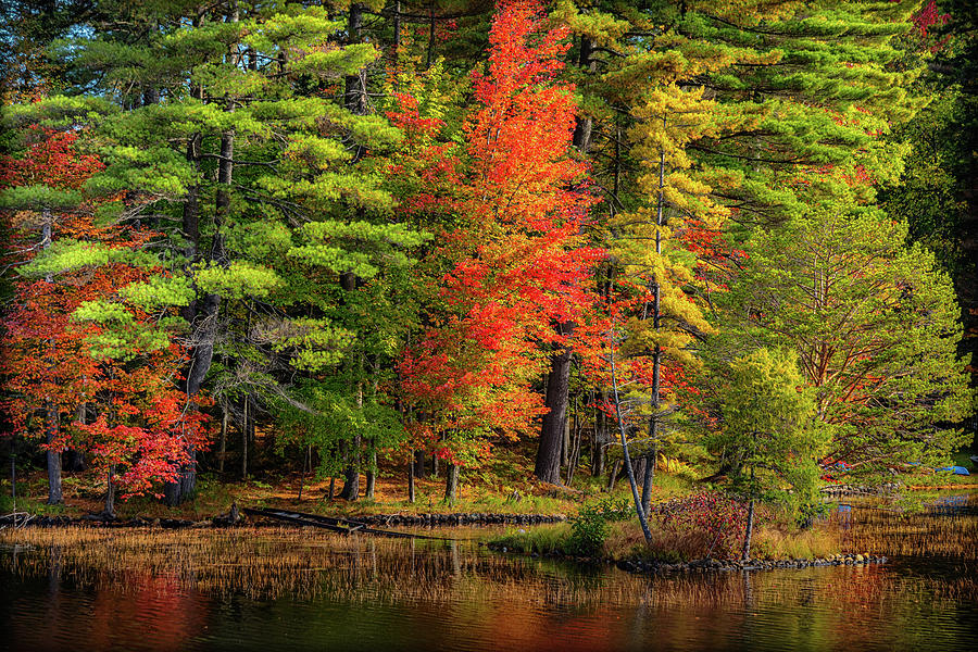 Autumn on Fourth Lake by Rod Best