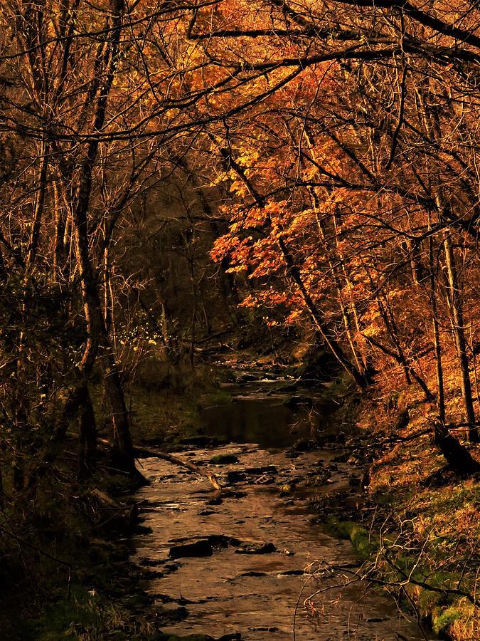Autumn Photograph - Autumn On Grannis Creek  by Lori Frisch