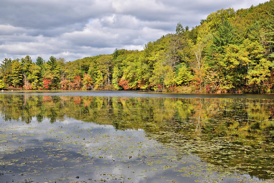 Autumn Photograph - Autumn on Greenville Pond by Luke Moore