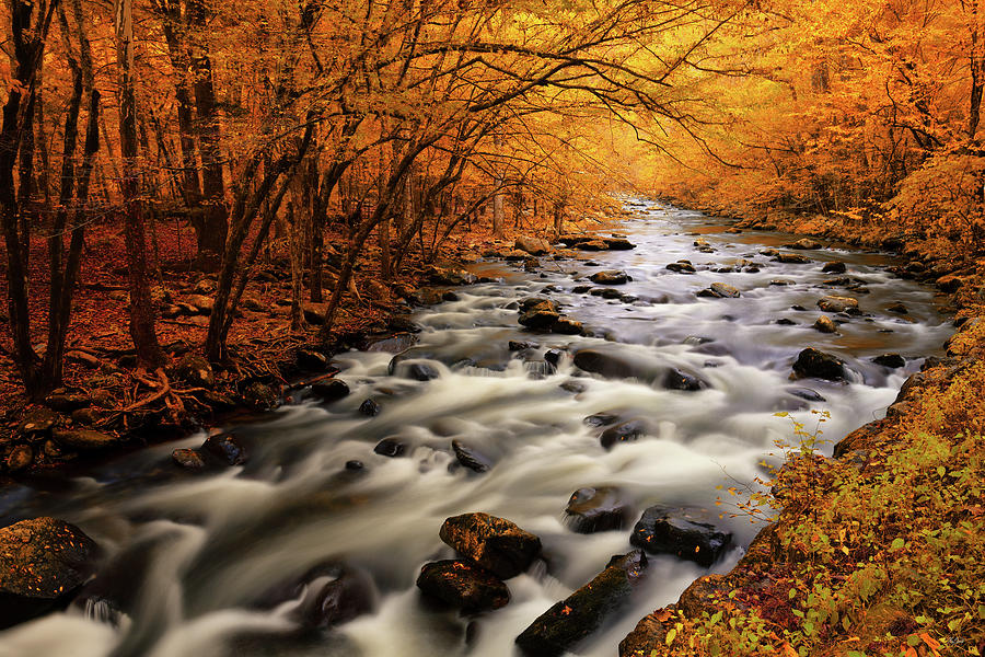 Autumn on the Little River by Greg Norrell