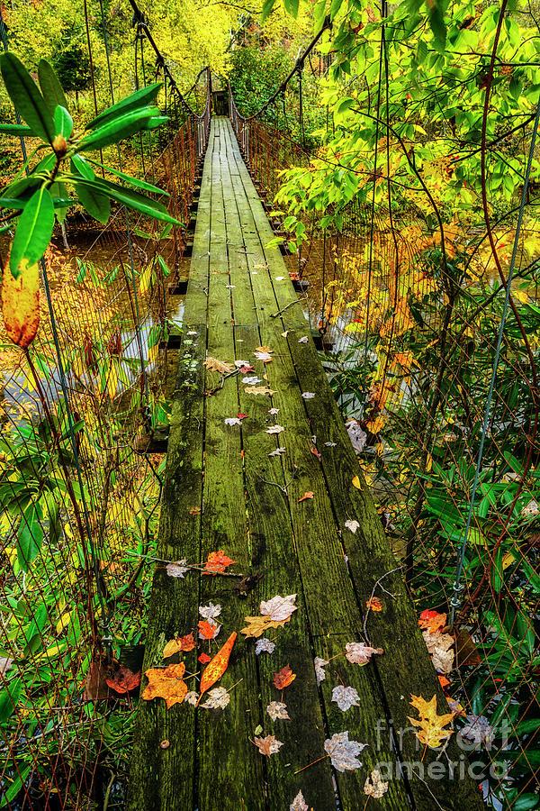 Autumn on the Swinging Bridge by Thomas R Fletcher