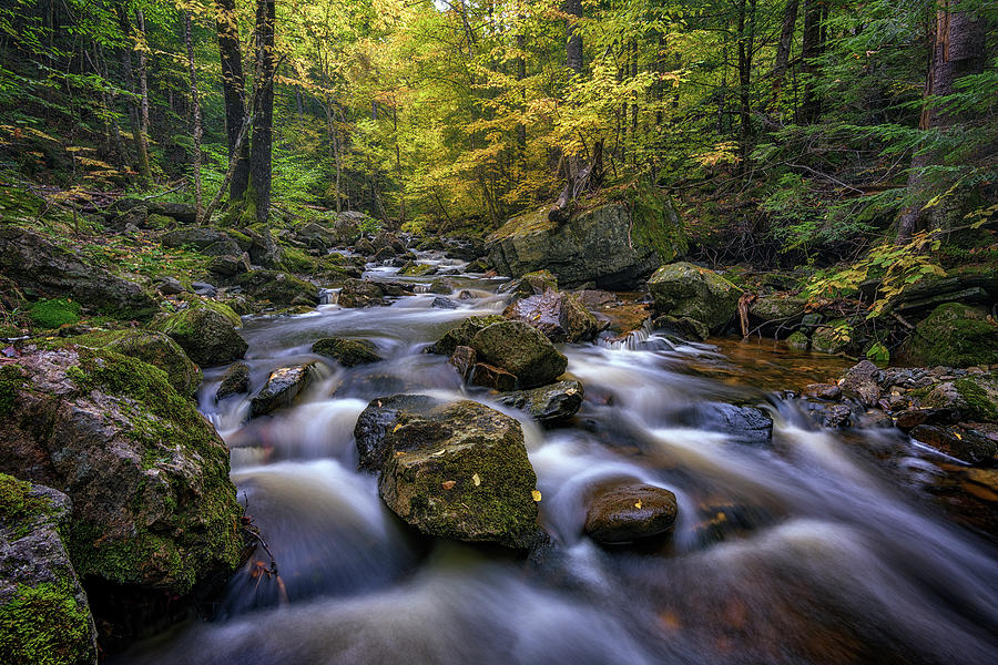Autumn on the West Branch of the Ellis River by Rick Berk