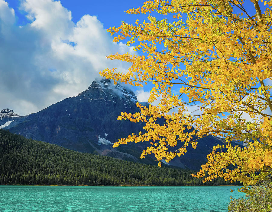 Autumn On Waterfowl Lake by Dan Sproul