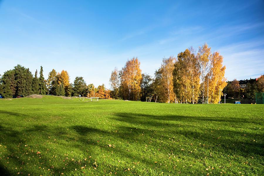Autumn Park Photograph by Chinaface