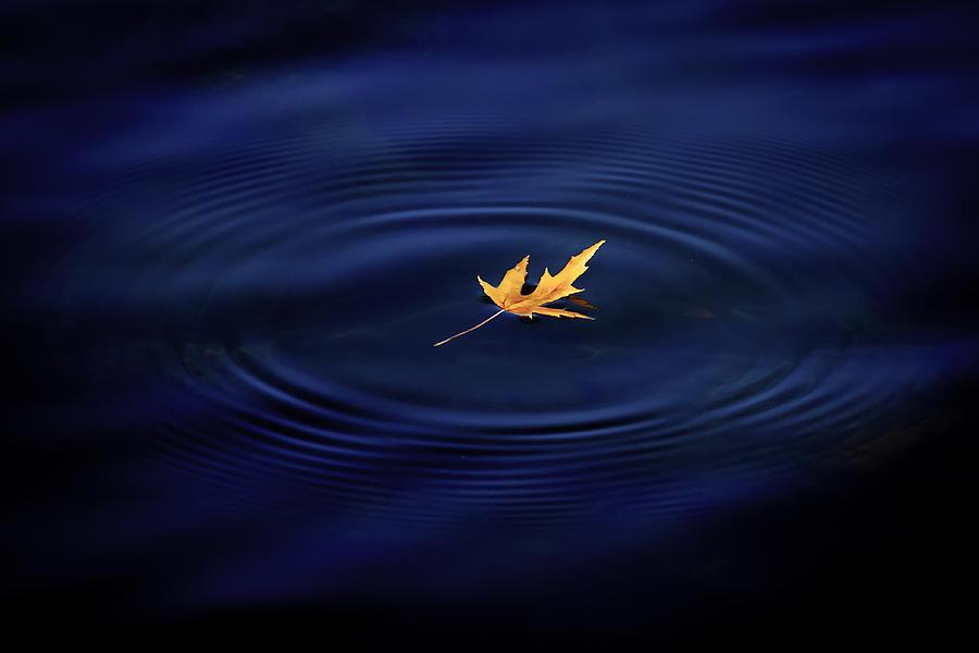 Autumn Peace by Allin Sorenson