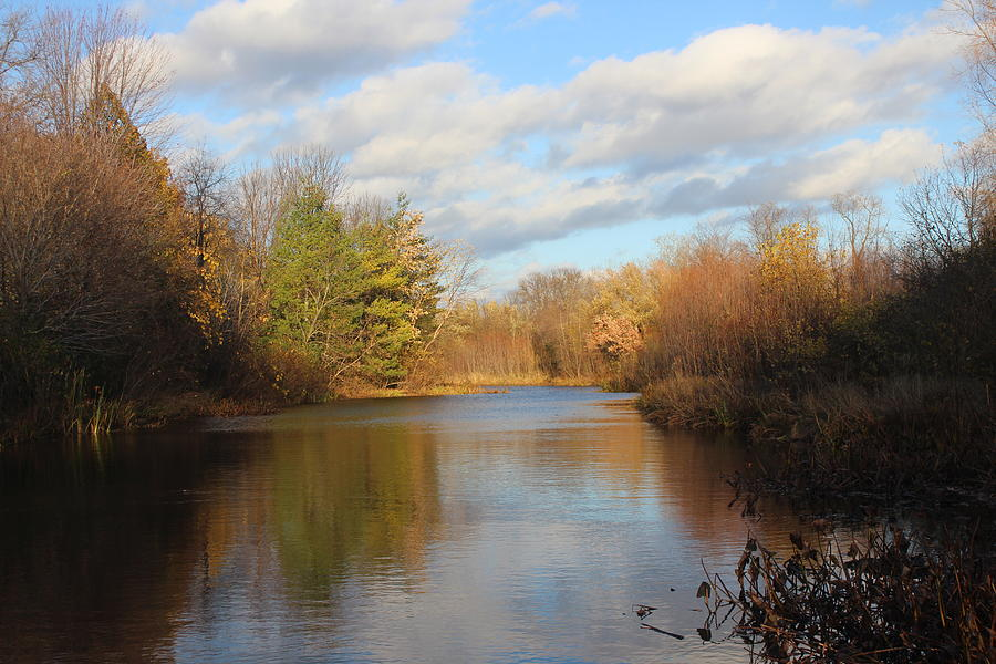Pond Photograph - Autumn Pond by Callen Harty
