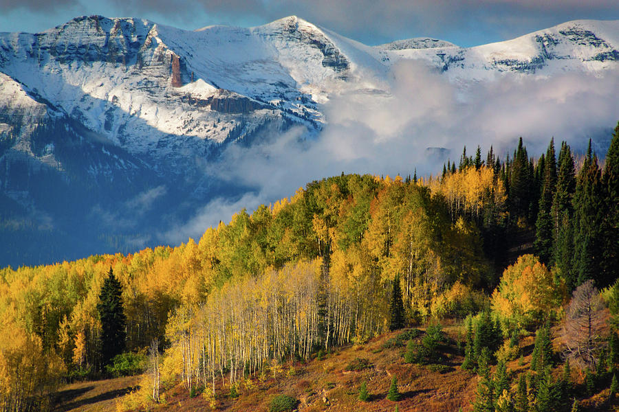 Autumn Pradise In The West Elk Mountgains by John De Bord