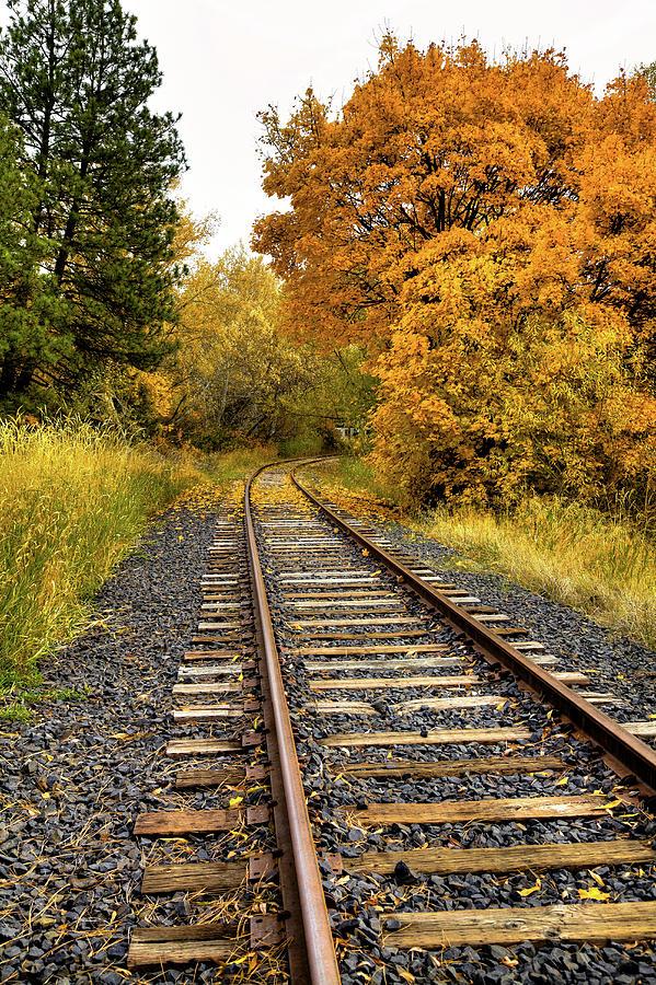 Autumn Rails by David Patterson