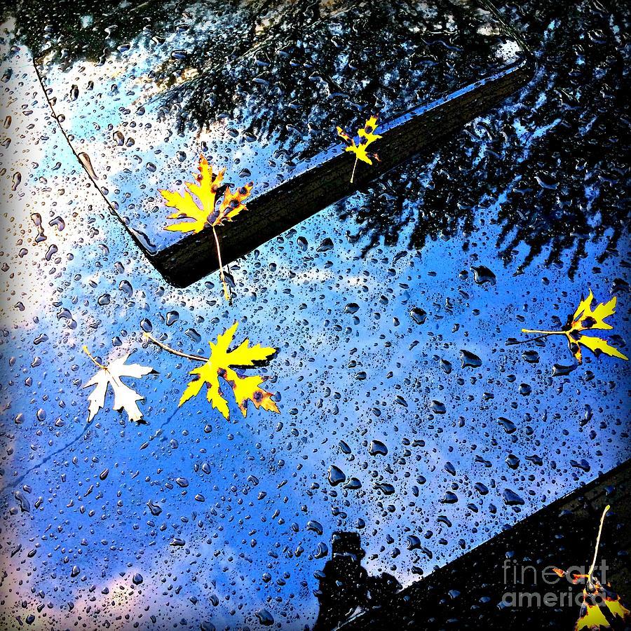Autumn Raindrops Car Reflections Photograph