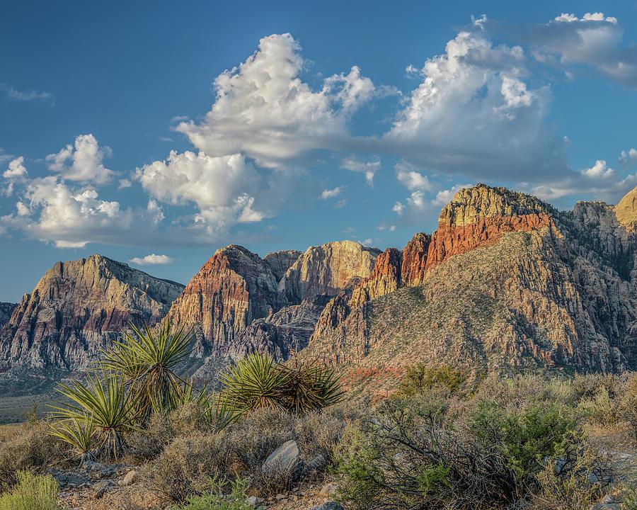 Autumn - Red Rock Canyon Photograph