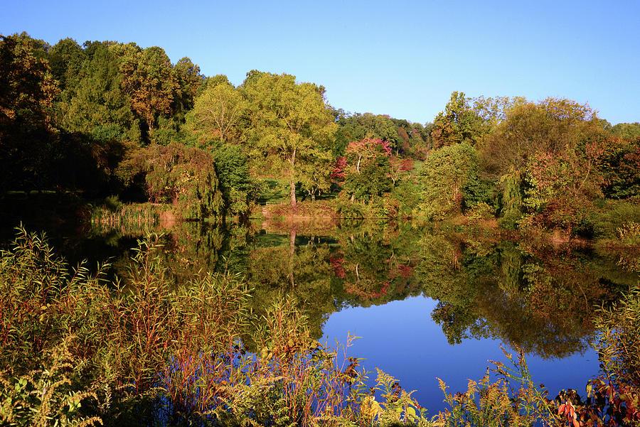 Autumn Reflection by Angie Tirado