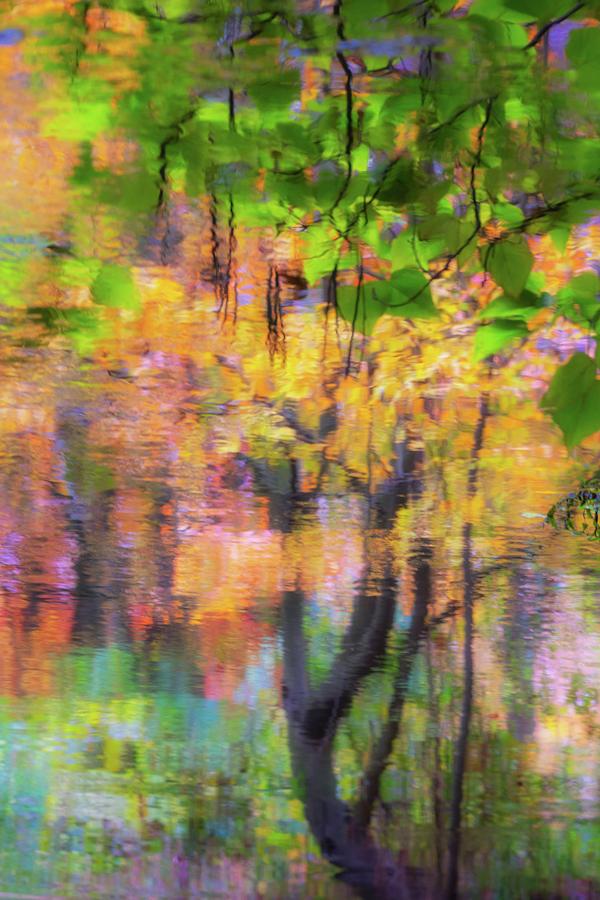 Autumn Reflection by Marzena Grabczynska Lorenc
