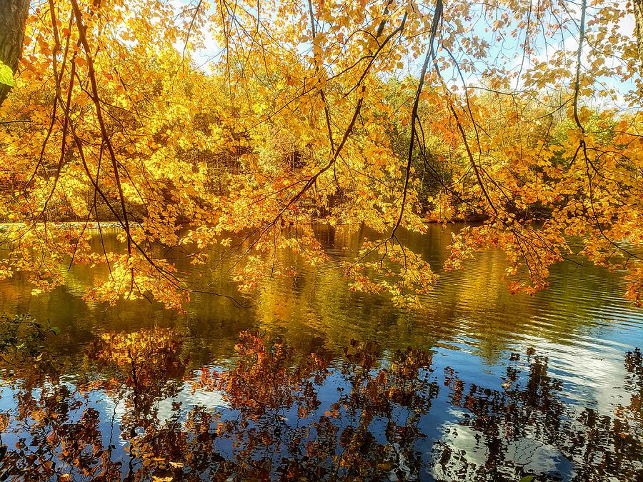 Autumn Reflection on Mt Gretna Lake  by Paul Kercher