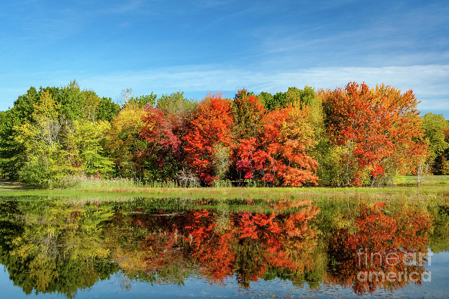 Autumn Reflections by Alan Schroeder