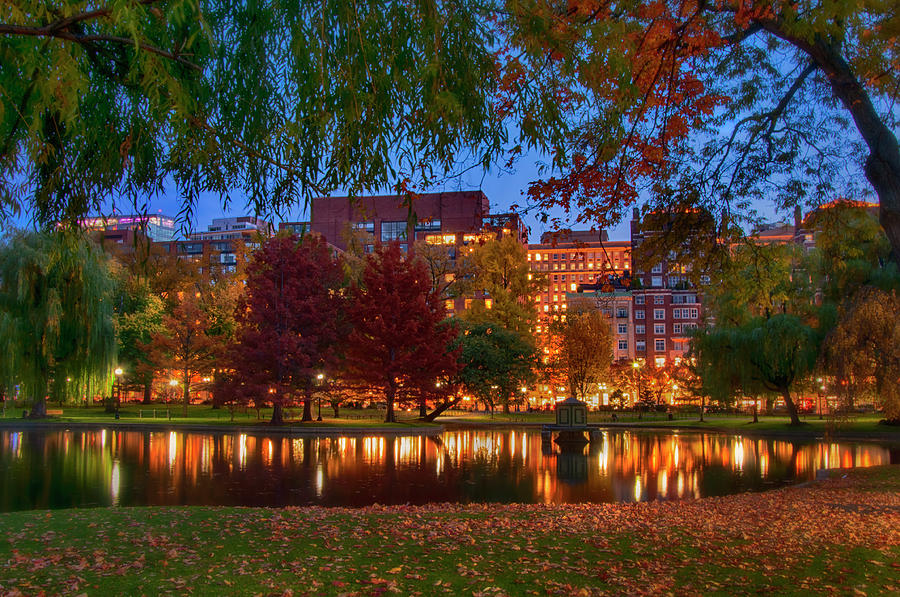 Autumn Reflections in the Boston Public Garden by Joann Vitali