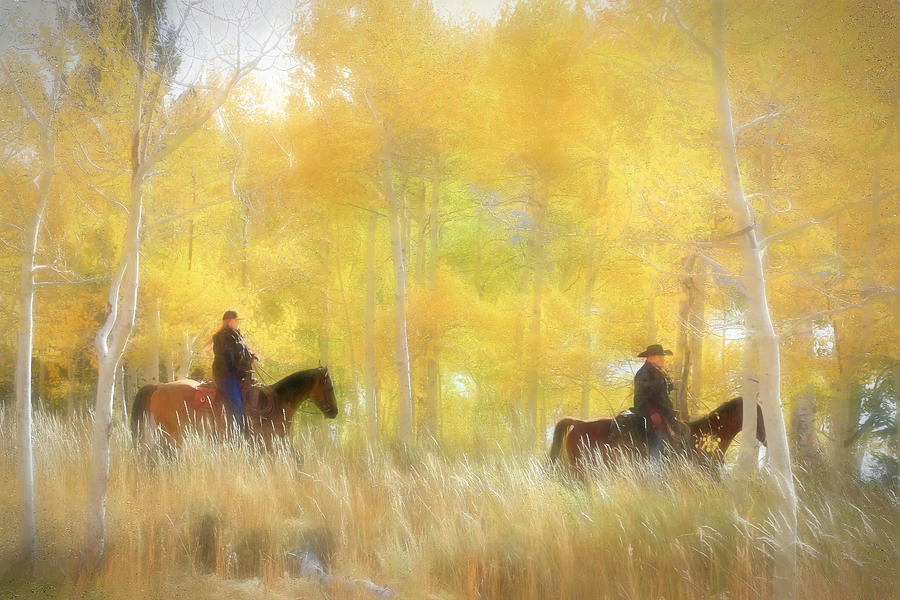Fishlake National Forest Photograph - Autumn Ride by Donna Kennedy