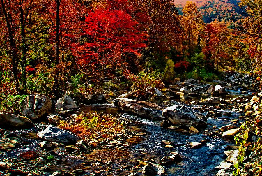 Autumn River Dreams by Allen Nice-Webb