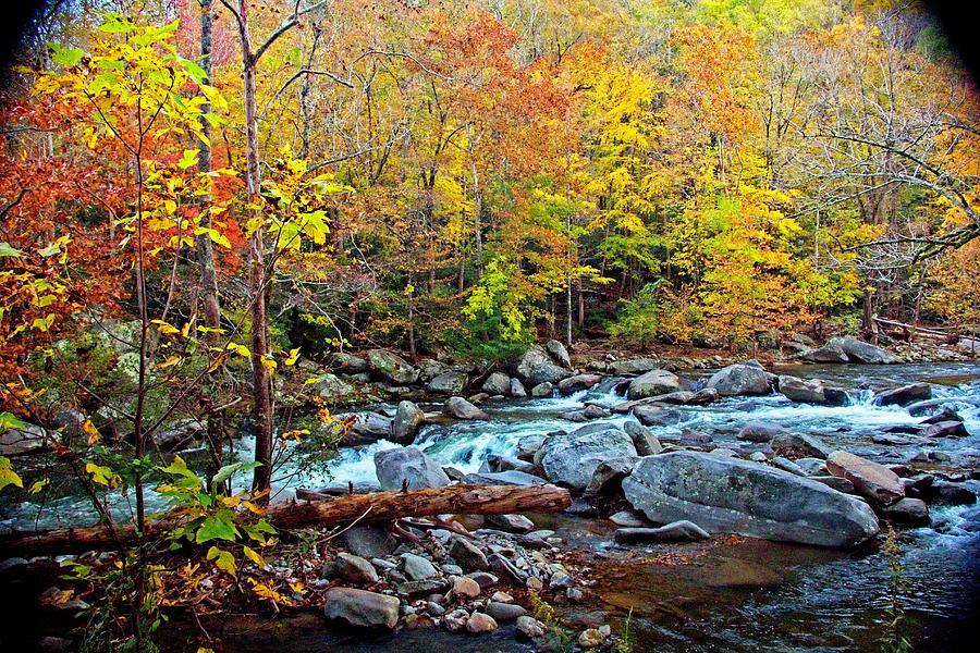 Autumn River Memories by Allen Nice-Webb