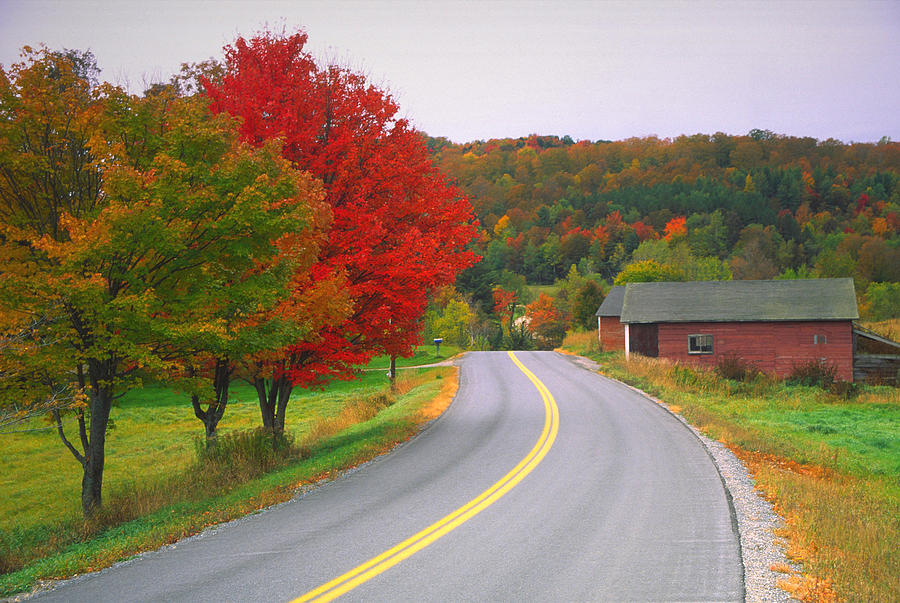 Autumn Road Photograph by Denistangneyjr