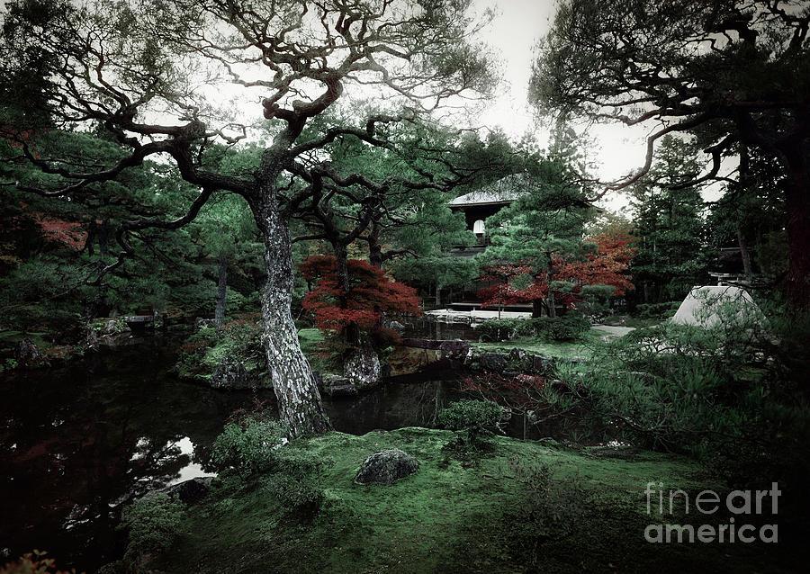 Autumn Scenery Of Ginkakuji Temple Japanese Zen Garden Photograph