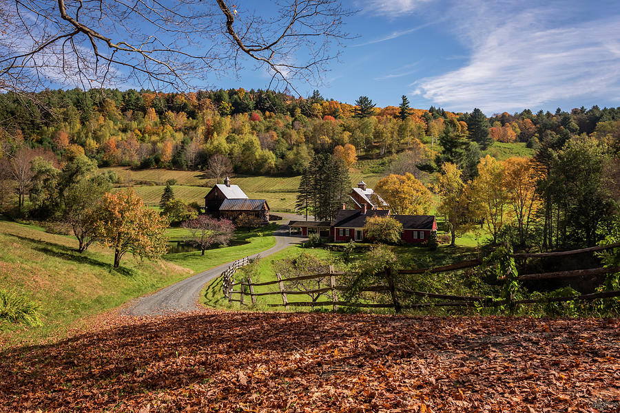 Autumn Sleepy Hollow Farm Vermont 2018 by Terry DeLuco