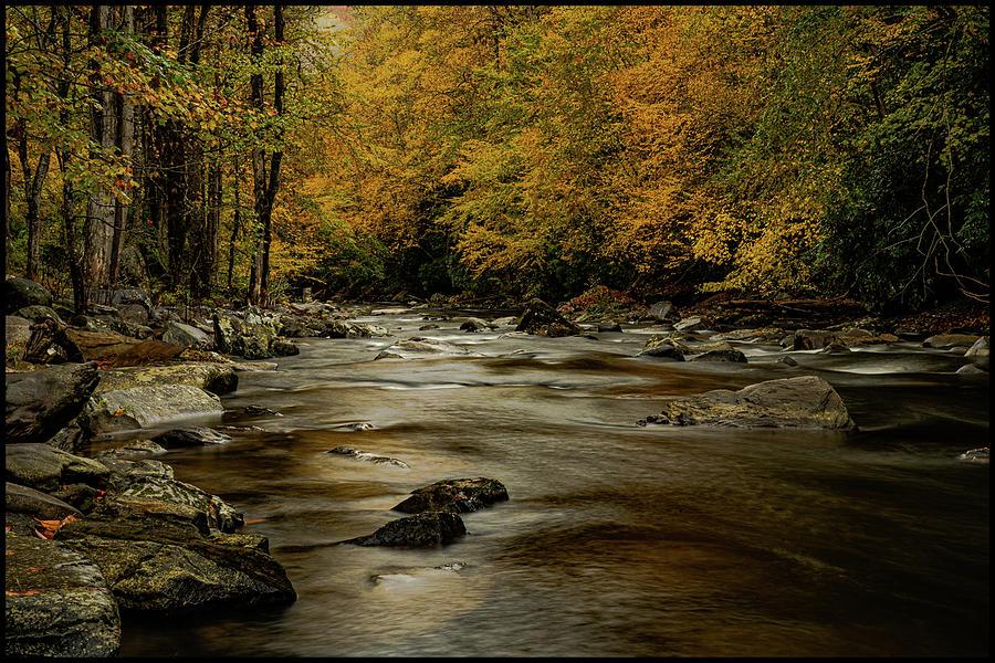 Autumn Splender on the Nantahala River by Kelly Kennon