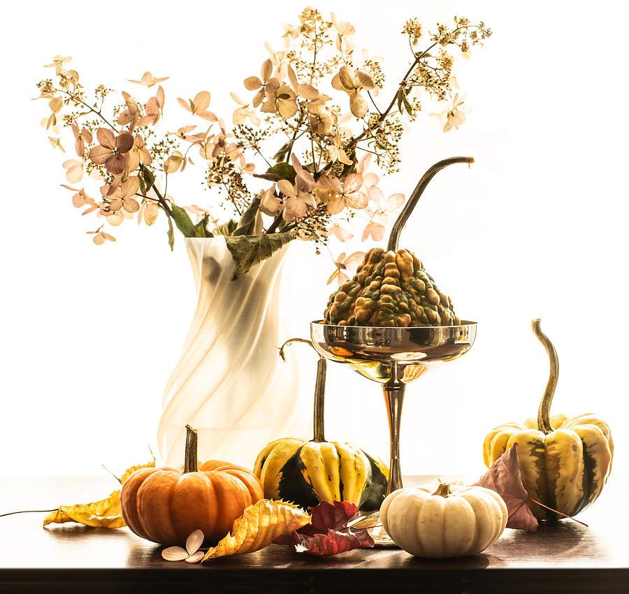 Autumn Still Life  by Maggie Terlecki