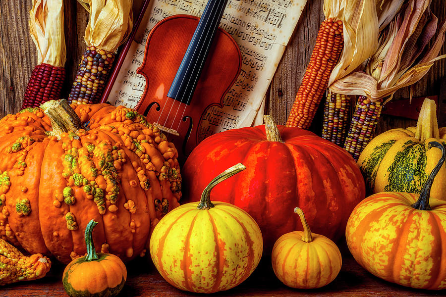 Pumpkins Photograph - Autumn Still Life With Violin by Garry Gay