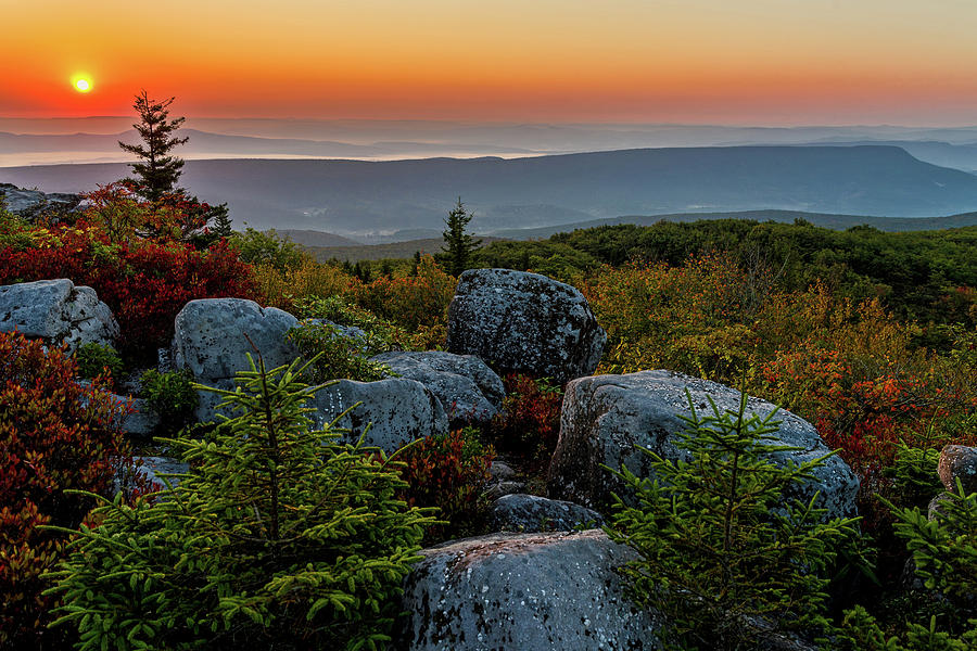 Autumn Sunrise in Dolly Sods by Lori Coleman