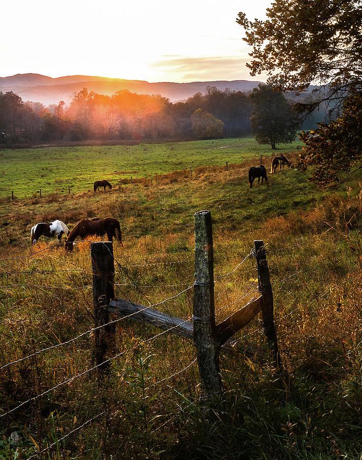 Autumn Sunset by Douglas Tate