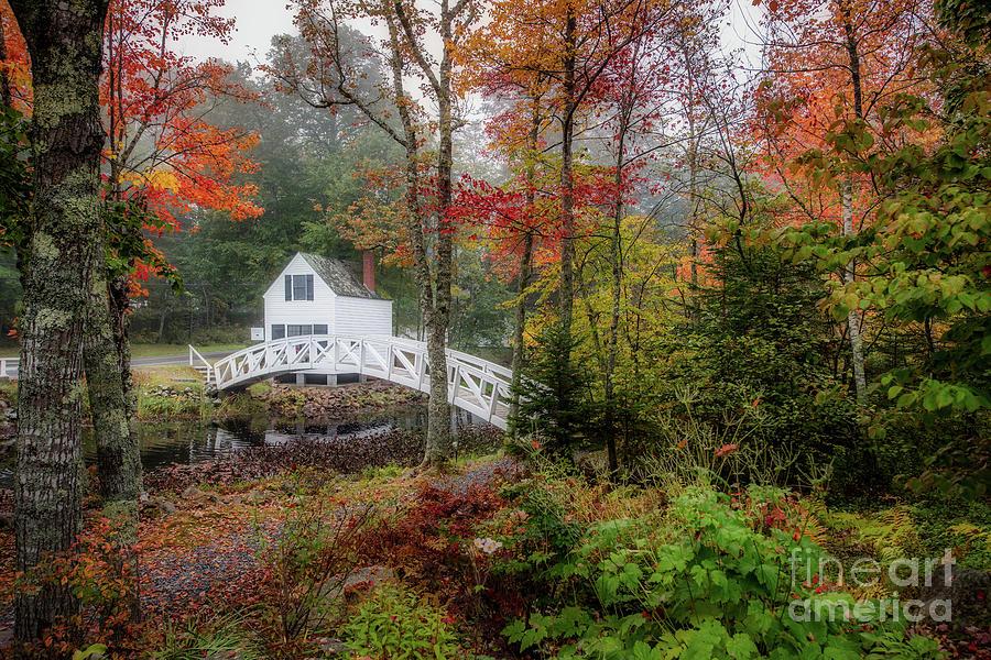 Autumn by Susan Garver