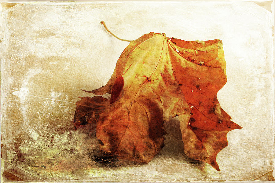 Autumn Texture by Randi Grace Nilsberg