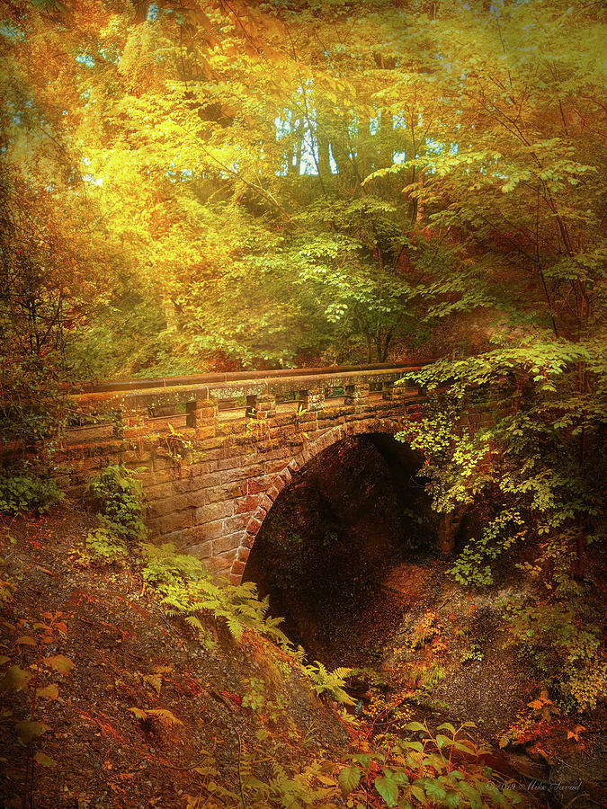 Autumn - The foot bridge by Mike Savad