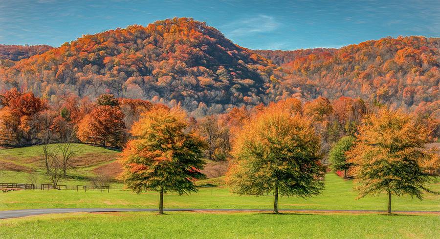 Autumn Times Three by Marcy Wielfaert
