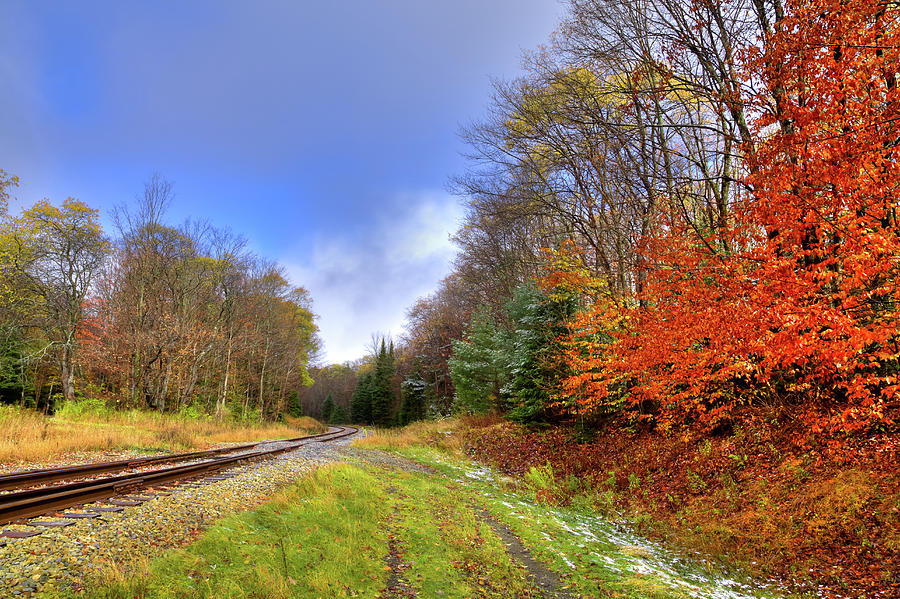 Autumn Tracks by David Patterson