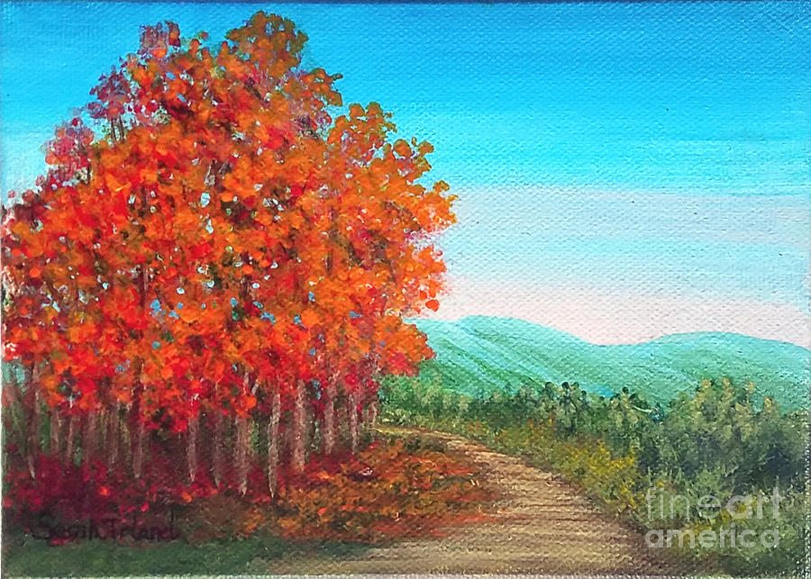 Autumn Trail by Sarah Irland