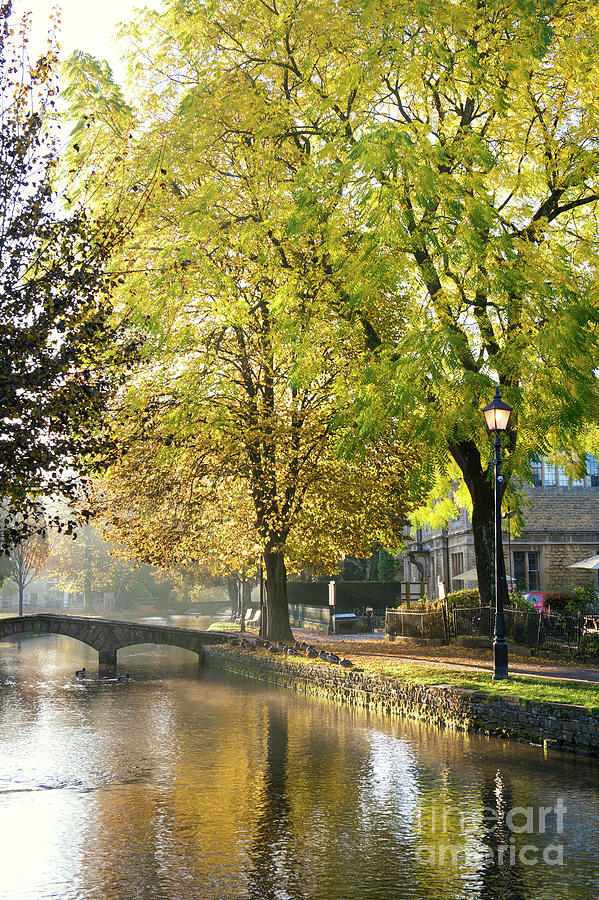 Autumn Trees in Bouton on the Water by Tim Gainey