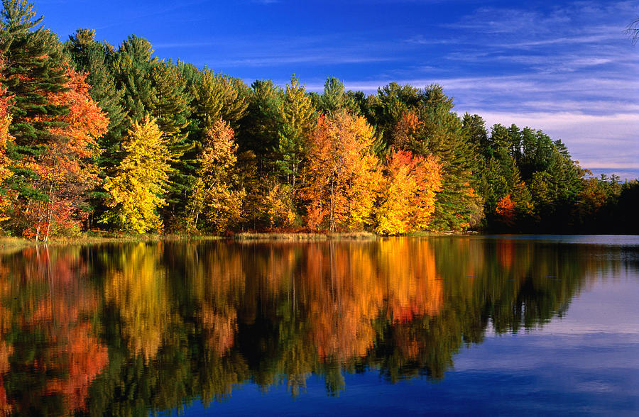 Autumn Trees In New Hampshire,new Photograph by Lonely Planet