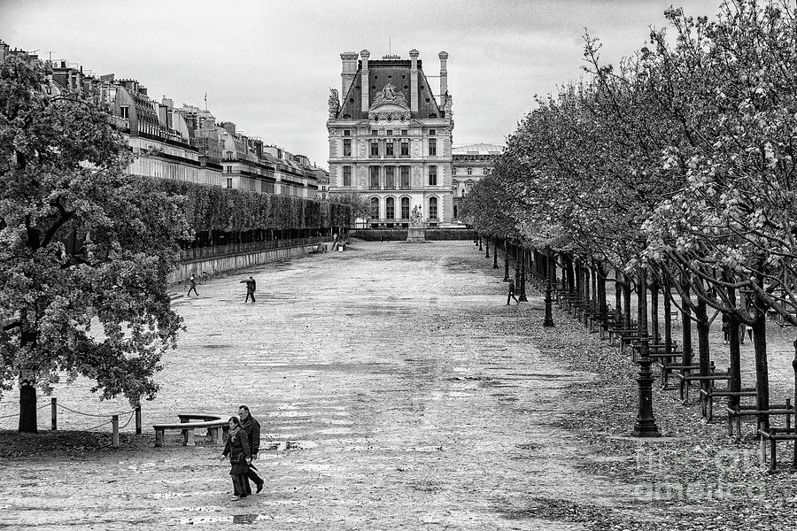 Autumn walk along the Champs Elysees Black and White by Wayne Moran