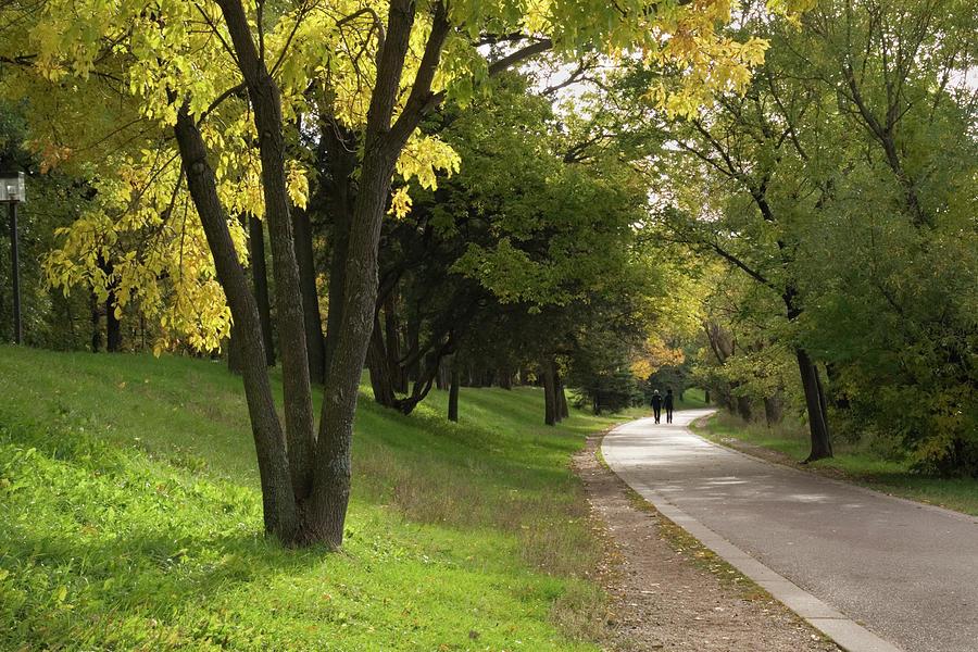 Autumn Walk Photograph by Yinyang