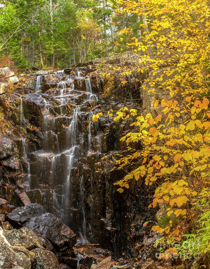 Autumn Waterfall by Karin Pinkham