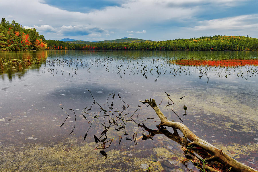 Autumn, White Lake N H by Michael Hubley
