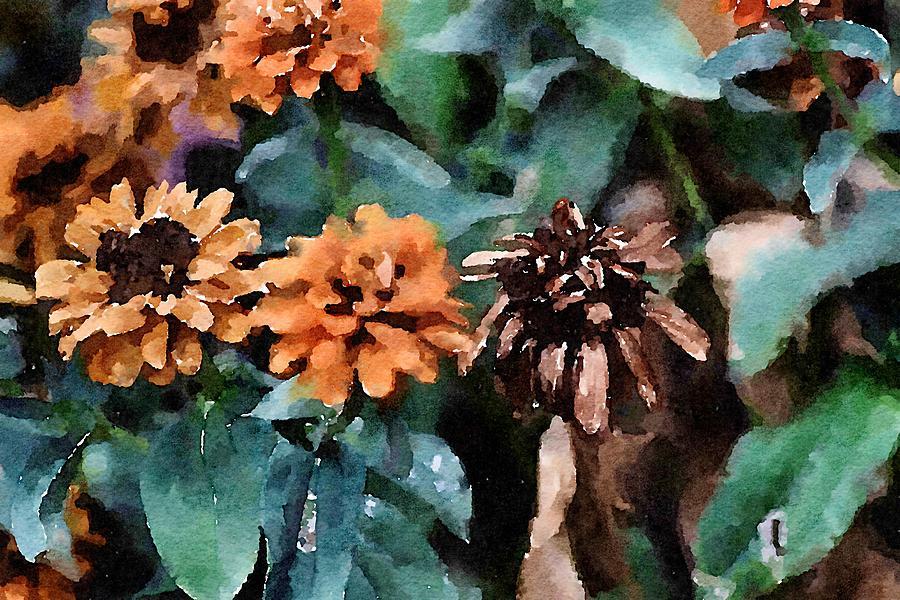 Autumn Zinnias by Bonnie Bruno
