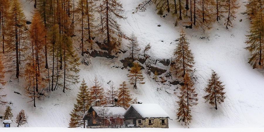 Autumnal snowfall by Roberto Pagani