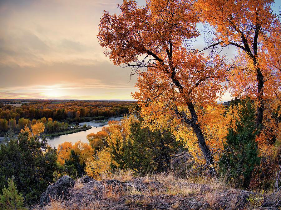 Autumn Photograph - Autumns Best by Leland D Howard